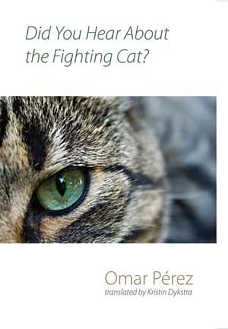 Cover: Did You Hear about the Fighting Cat.  Shearsman Books Ltd., 2010.